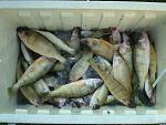 Fishin 2 pics