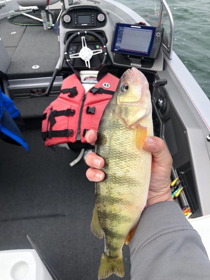Fishing with Steve and Jeremy 10/25/19-steve-jeremy-10_25_19e-jpg