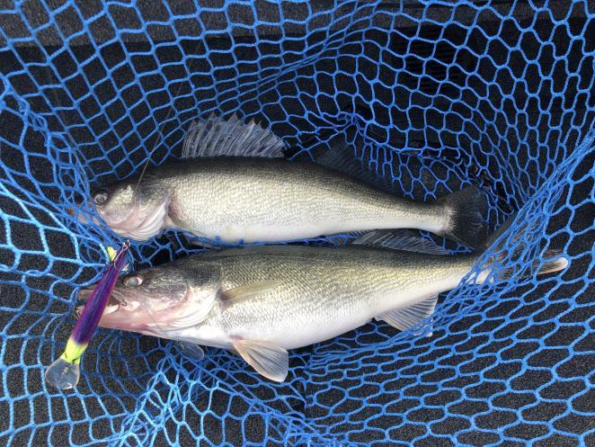 Fishing with Capt Jenn and Capt Eric 11/26/19-jenn-eric-11_26_19j-jpg