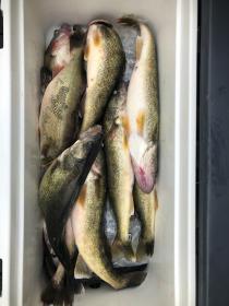 Fishing with Bill, Bryce, and Brighton 4/24/2021-bill-bryce-brighton-4-24-20216-jpg