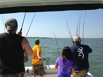 Quad Walleye Hookup at Mouse Island Reef by Buc-Eye in Member's Categories